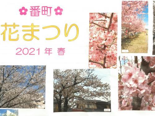 143_20210501.jpg